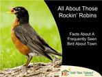 All About Those Rockin  Robins