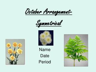 Name Date Period