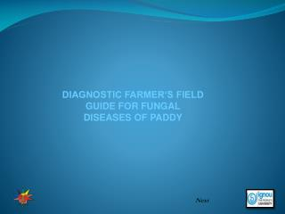 DIAGNOSTIC FARMER S FIELD GUIDE FOR FUNGAL DISEASES OF PADDY
