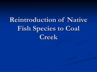 Reintroduction of Native Fish Species to Coal Creek