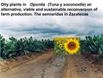 Oily plants in Opuntia Tuna y xoconostle an  alternative, viable and sustainable reconversion of farm production. The se