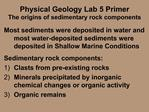 Physical Geology Lab 5 Primer The origins of sedimentary rock components