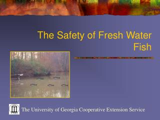The Safety of Fresh Water Fish