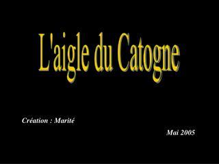 Laigle du Catogne
