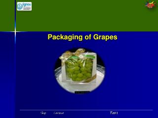 Packaging of Grapes