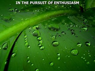 IN THE PURSUIT OF ENTHUSIASM