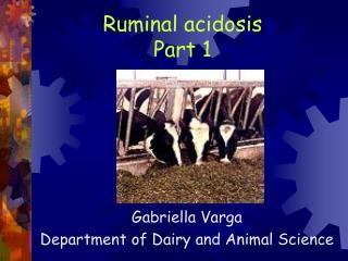 Ruminal acidosis  Part 1