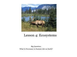 Lesson 4: Ecosystems