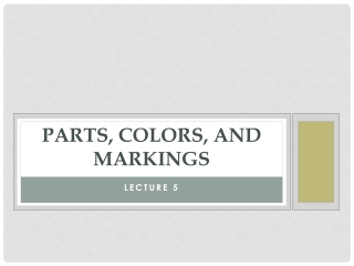 Parts, Colors, and Markings