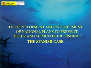 THE DEVELOPMENT AND ENFORCEMENT OF NATIONAL PLANS TO PREVENT, DETER AND ELIMINATE IUU FISHING: THE SPANISH CASE