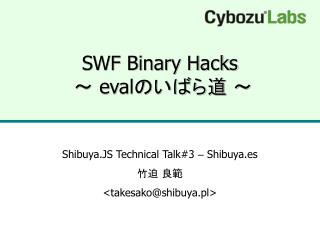 SWF Binary Hacks   eval