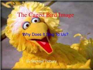 The Caged Bird Image