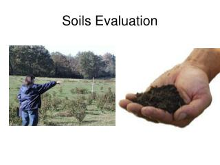 Soils Evaluation