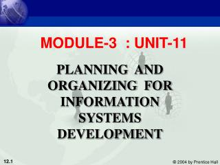 PLANNING  AND ORGANIZING  FOR INFORMATION SYSTEMS DEVELOPMENT