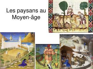 Les paysans au Moyen- ge