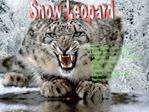 Common Name: Snow Leopard  Kingdom: Animalia  Phylum: Chordata Vertebrata  Class: Mammalia  Order: Carnivora  Family: Fe