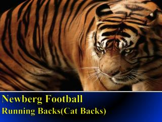 Newberg Football  Running BacksCat Backs