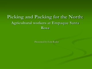 Picking and Packing for the North: Agricultural workers at Empaque Santa Rosa