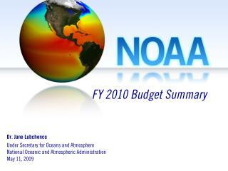 FY 2010 Budget Summary