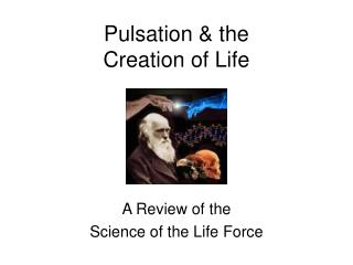 Pulsation  the  Creation of Life