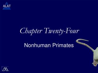 Chapter Twenty-Four