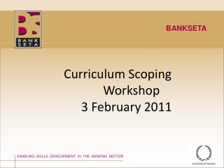 Curriculum Scoping                            Workshop                      3 February 2011