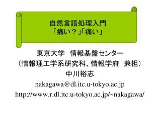 nakagawadl.itc.u-tokyo.ac.jp r.dl.itc.u-tokyo.ac.jp