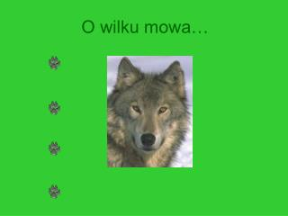 O wilku mowa
