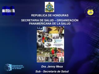 REPUBLICA DE HONDURAS SECRETARIA DE SALUD   ORGANIZACI N PANAMERICANA DE LA SALUD