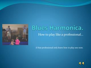 Blues Harmonica.