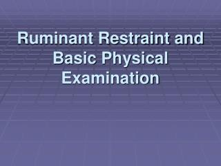 Ruminant Restraint and Basic Physical Examination