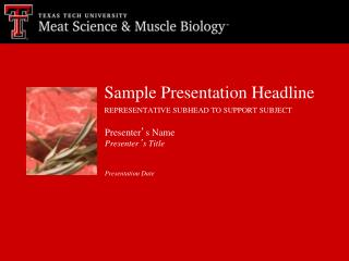 Sample Presentation Headline REPRESENTATIVE SUBHEAD TO SUPPORT SUBJECT