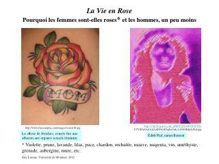 La Vie en Rose Pourquoi les femmes sont-elles roses et les hommes, un peu moins
