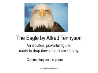 The Eagle by Alfred Tennyson