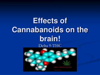 Effects of Cannabanoids on the brain