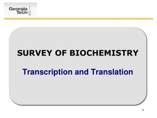 SURVEY OF BIOCHEMISTRY  Transcription and Translation