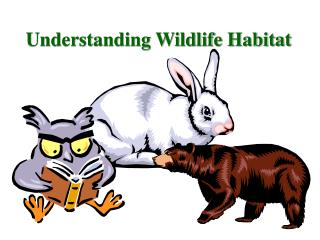 Understanding Wildlife Habitat