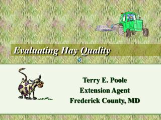 Evaluating Hay Quality