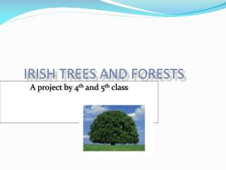 Irish Trees and forests