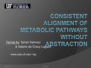 Consistent alignment of metabolic pathways without abstraction