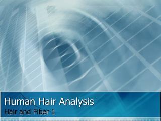 Human Hair Analysis