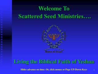 Scattered Seed Ministries .