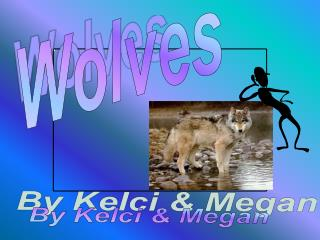 Wolves By Kelci  Megan Introduction