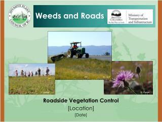 Roadside Vegetation Control [Location] [Date]