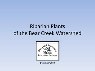 Riparian Plants  of the Bear Creek Watershed