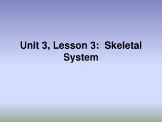 Unit 3, Lesson 3:  Skeletal System