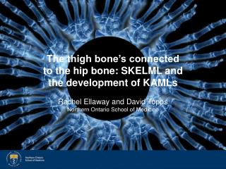 The thigh bone s connected to the hip bone: SKELML and the development of KAMLs