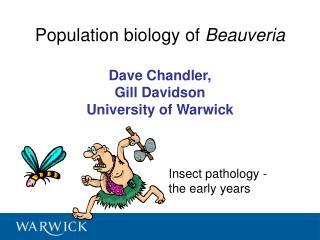 Population biology of Beauveria  Dave Chandler,  Gill Davidson University of Warwick