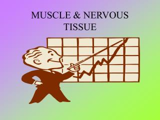MUSCLE  NERVOUS TISSUE