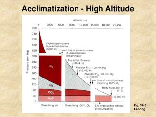 Acclimatization - High Altitude